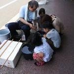 大豊ビル・雨の日商店街 2017.6